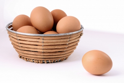Never Put All Eggs in One Basket